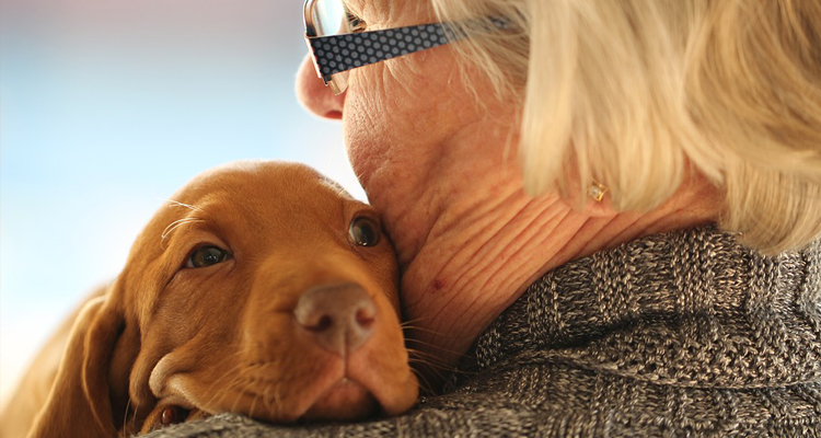 Elderly Lady and Puppy
